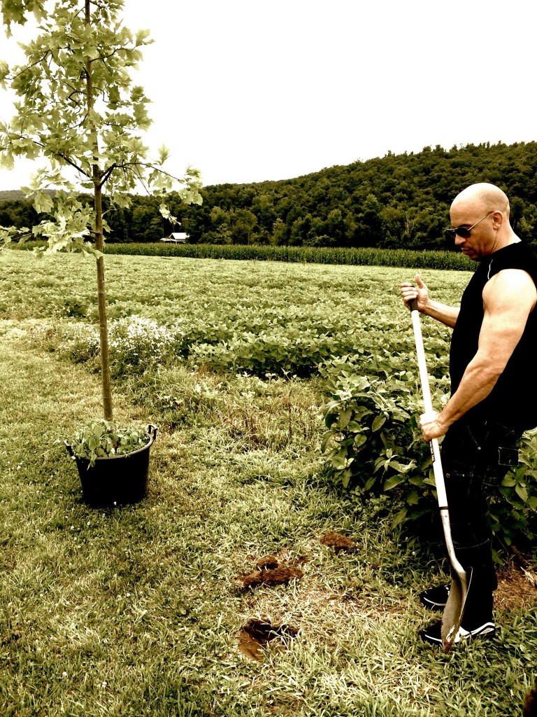 Vin Diesel Planting a Tree for Groot before doing his ALS Ice Bucket Challenge (photo (C) Vin Diesel, from his facebook page