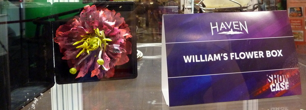 William's Flower